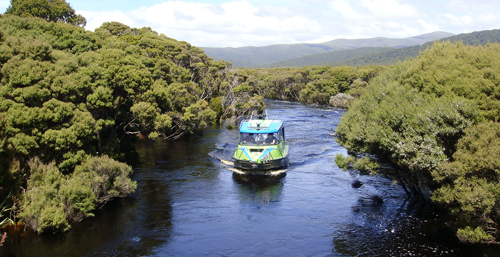 Aihe Eco Charters & Water Taxi on Freshwater River