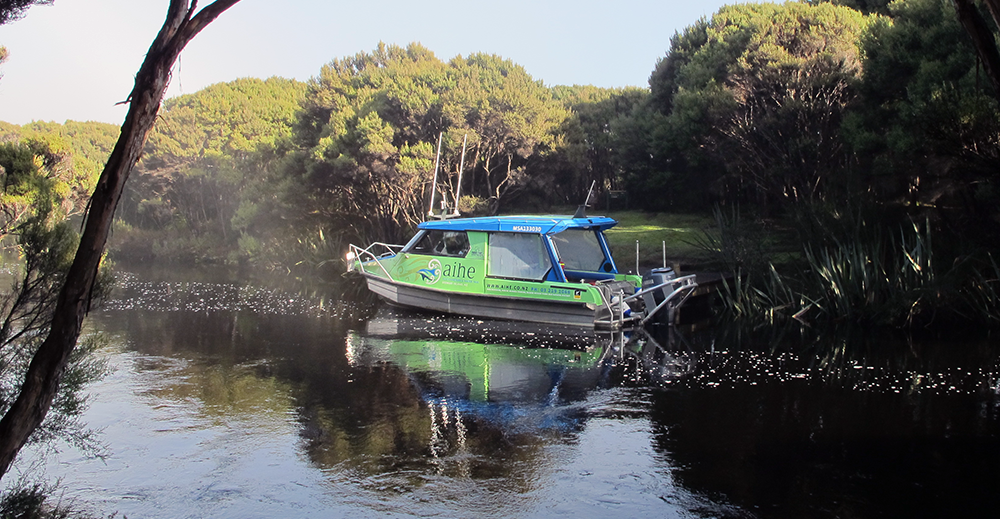 Aihe Eco Charters & Water Taxi at Freshwater Landing, Stewart Island
